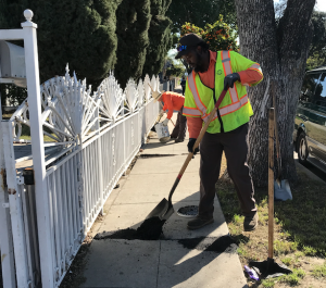 Lynwood is Making Sidewalks and Curbs Safer for You