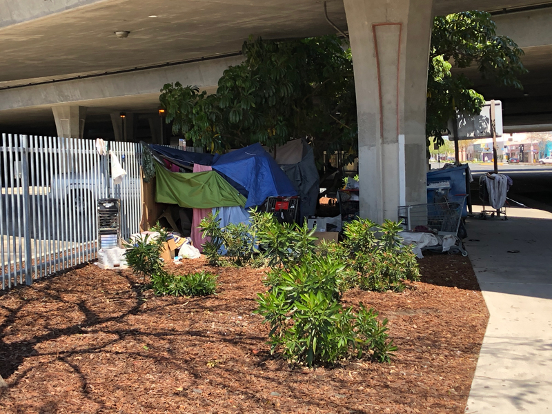 CalTrans' Homeless Population in Lynwood