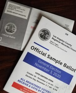 November 3rd Official Sample Ballots